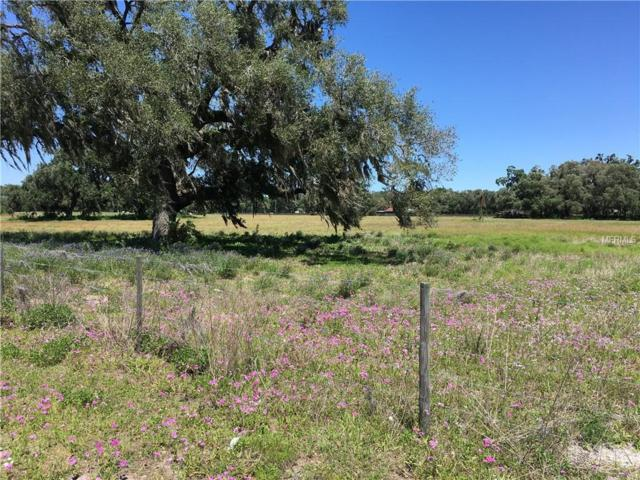 Cr 471 And Cr 721, Webster, FL 33597 (MLS #G5000415) :: RealTeam Realty