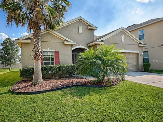 314 Peacock Springs Court, Groveland, FL 34736 (MLS #G5000761) :: The Duncan Duo Team