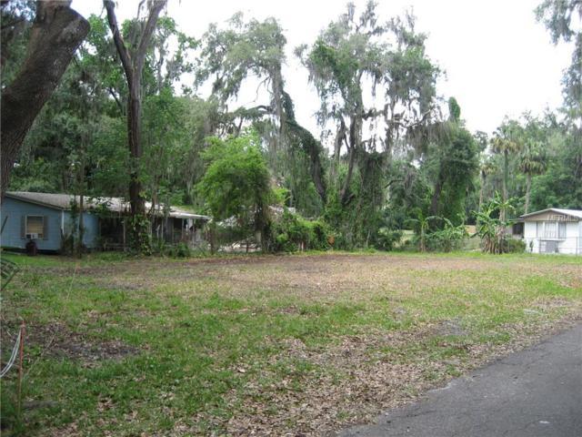 County Road 434A, Lake Panasoffkee, FL 33538 (MLS #G5000818) :: The Duncan Duo Team