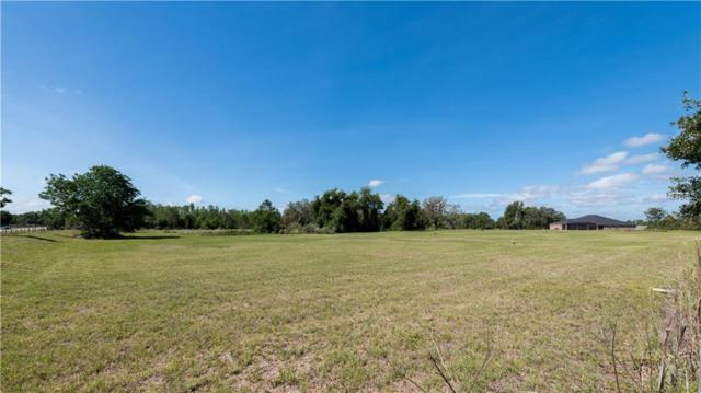Lot 110 Greengrove Boulevard, Clermont, FL 34714 (MLS #G5000961) :: The Duncan Duo Team