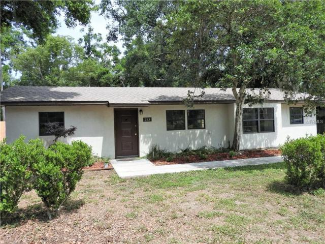 263 5TH Street, Webster, FL 33597 (MLS #G5001403) :: The Duncan Duo Team