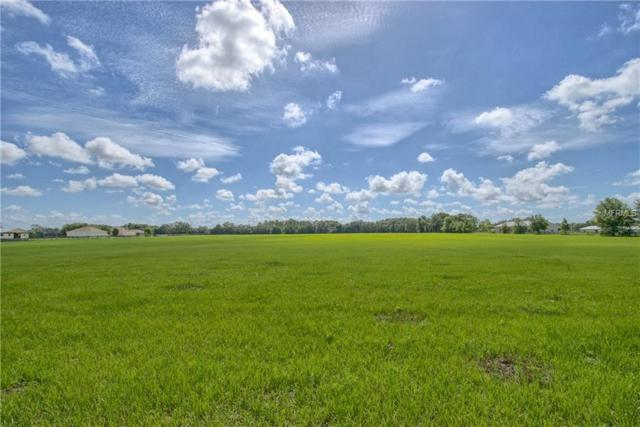 Cr 103, Oxford, FL 34484 (MLS #G5001792) :: Griffin Group