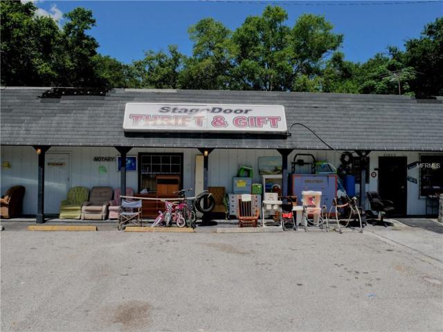 21800 Us Highway 441, Mount Dora, FL 32757 (MLS #G5001910) :: Team Touchstone