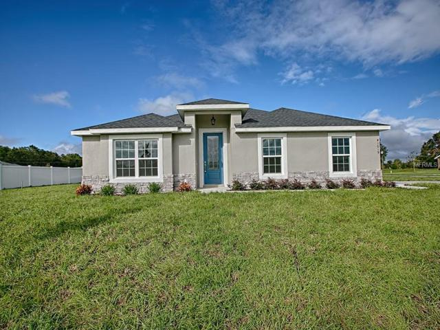 24430 Calusa Boulevard, Eustis, FL 32736 (MLS #G5001998) :: Burwell Real Estate