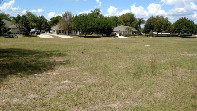 24250 Calusa Boulevard, Eustis, FL 32736 (MLS #G5002554) :: Mark and Joni Coulter | Better Homes and Gardens