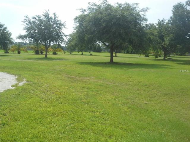 Arrowtree Blvd, Clermont, FL 34715 (MLS #G5002888) :: Griffin Group