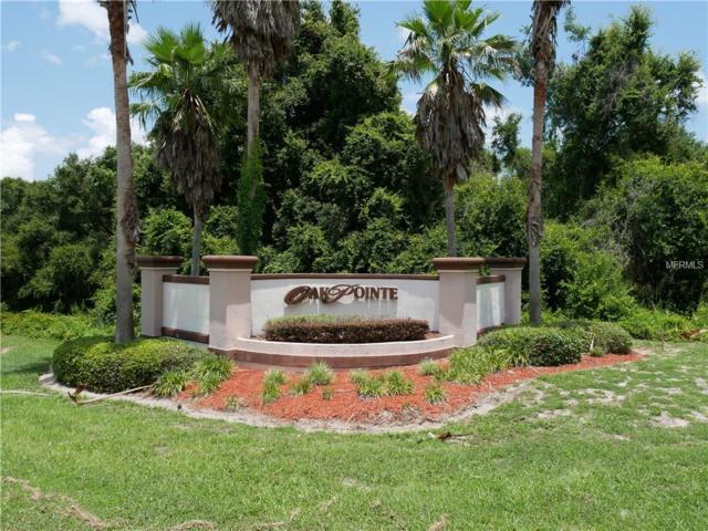 N Oak Point Drive, Lady Lake, FL 32159 (MLS #G5002976) :: The Lockhart Team