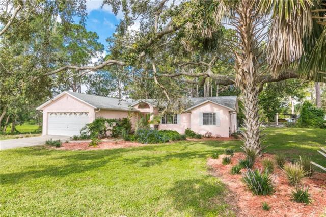 601 Vincent Drive, Mount Dora, FL 32757 (MLS #G5003028) :: Revolution Real Estate