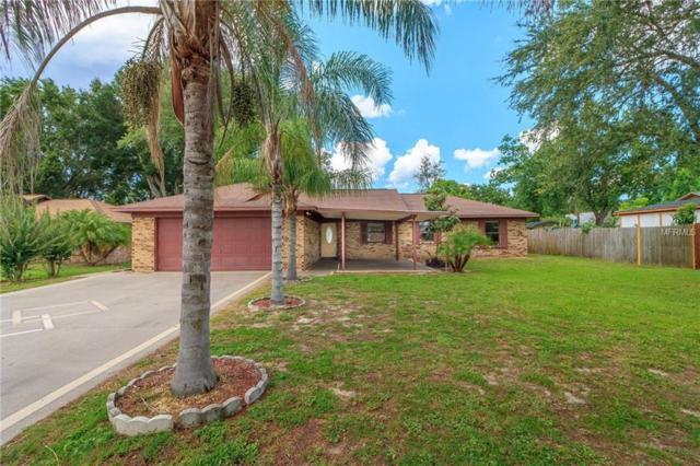 3355 Mary Lane, Mount Dora, FL 32757 (MLS #G5003151) :: KELLER WILLIAMS CLASSIC VI