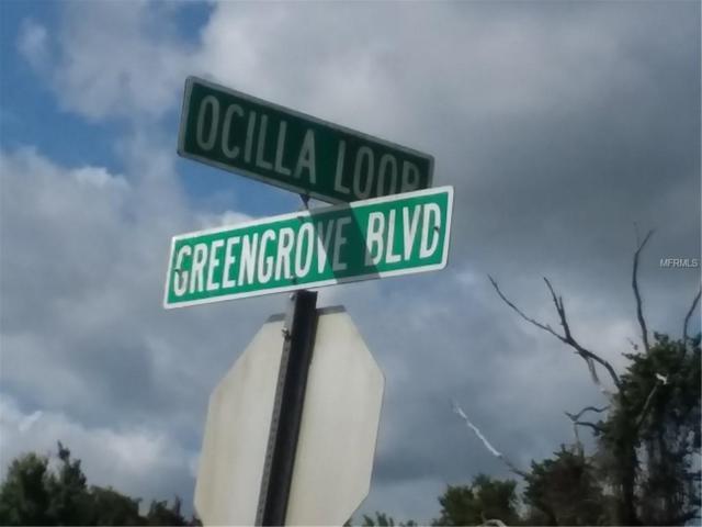 Ocilla Loop, Clermont, FL 34711 (MLS #G5003238) :: Griffin Group