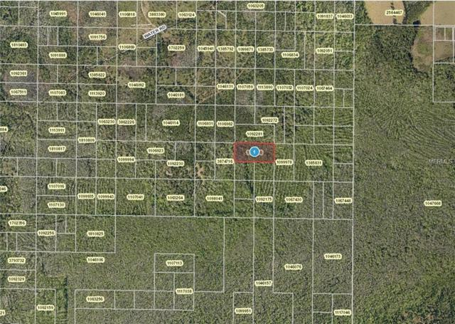 Water Road, Clermont, FL 34714 (MLS #G5003291) :: The Duncan Duo Team