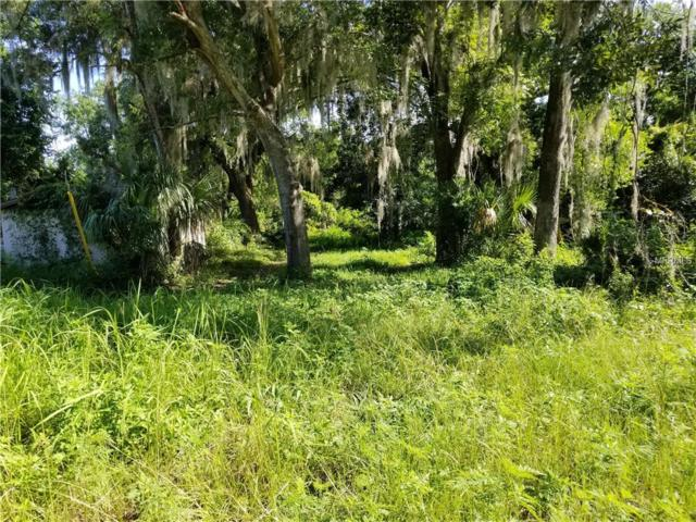 17345 54TH Street, Ocklawaha, FL 32179 (MLS #G5003618) :: Godwin Realty Group