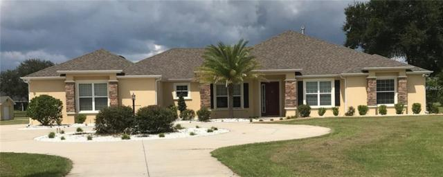 10583 NE 104TH Circle, Oxford, FL 34484 (MLS #G5004352) :: Team Pepka