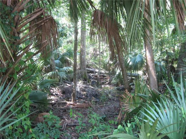 County Road 415, Lake Panasoffkee, FL 33538 (MLS #G5004374) :: The Lersch Group