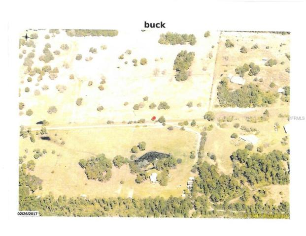 Buck Run Drive, Paisley, FL 32767 (MLS #G5004572) :: Godwin Realty Group
