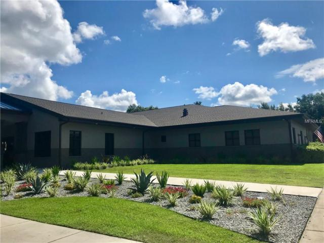 2221 19TH AVENUE Road, Ocala, FL 34471 (MLS #G5004792) :: Griffin Group