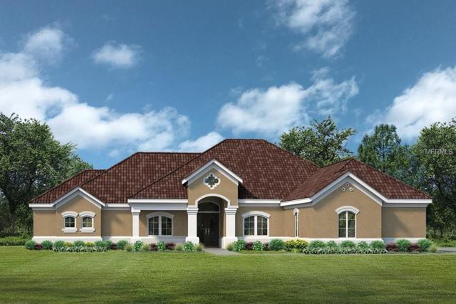 LOT C21 Sawgrass Run Lot C21, Tavares, FL 32778 (MLS #G5004835) :: Baird Realty Group