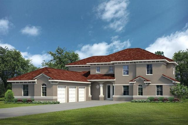 LOT C22 Sawgrass Run Lot C22, Tavares, FL 32778 (MLS #G5004837) :: The Duncan Duo Team