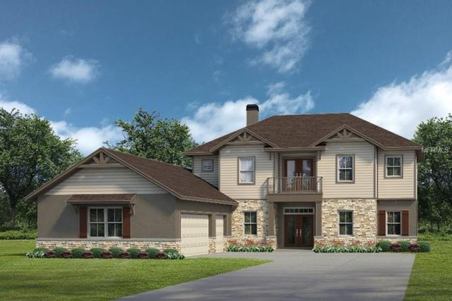 LOT E12 Live Oak Drive Lot E12, Tavares, FL 32778 (MLS #G5004846) :: RealTeam Realty