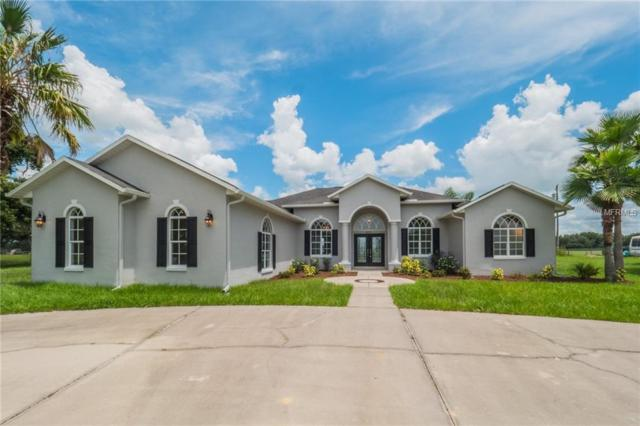 8311 Cr 747, Webster, FL 33597 (MLS #G5004998) :: RealTeam Realty