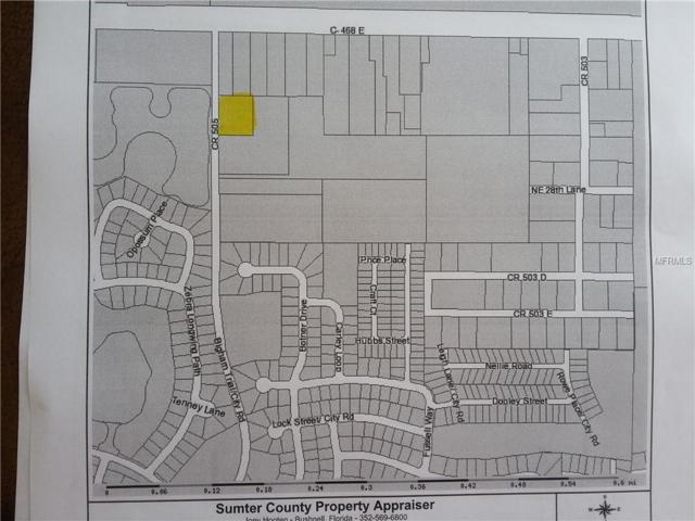 2895 County Road 505, Wildwood, FL 34785 (MLS #G5005022) :: The Price Group
