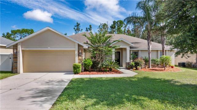 2951 Southern Pines Loop, Clermont, FL 34711 (MLS #G5005079) :: The Light Team