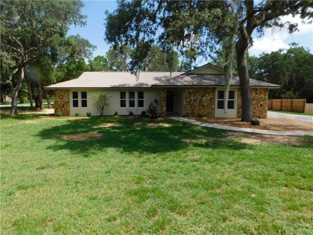 15901 Hansonview Drive, Tavares, FL 32778 (MLS #G5005105) :: KELLER WILLIAMS CLASSIC VI