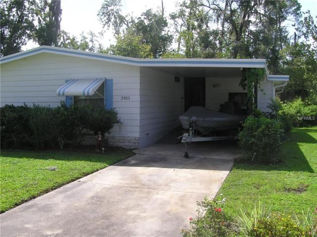 2851 Myakka River Road, Tavares, FL 32778 (MLS #G5005175) :: The Duncan Duo Team