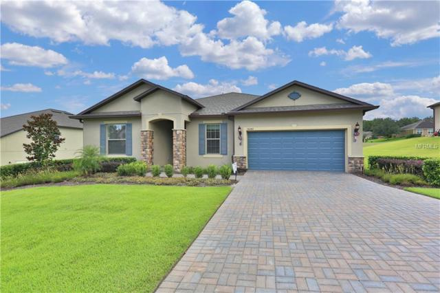30243 Bretton Loop, Mount Dora, FL 32757 (MLS #G5005258) :: Mark and Joni Coulter | Better Homes and Gardens