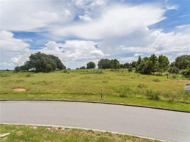 3717 Ridge Run Drive, Minneola, FL 34715 (MLS #G5005274) :: The Duncan Duo Team