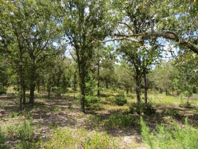 0 SE 113TH ST RD, Ocklawaha, FL 32179 (MLS #G5005400) :: Baird Realty Group