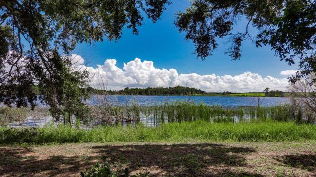 Lake Emma Road, Groveland, FL 34736 (MLS #G5005823) :: G World Properties