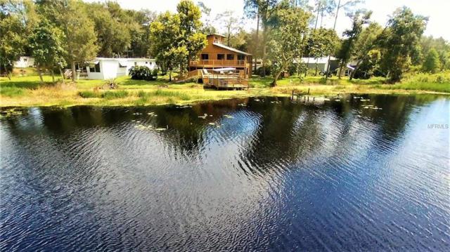 25710 Lake Lulu Drive, Paisley, FL 32767 (MLS #G5005874) :: Griffin Group