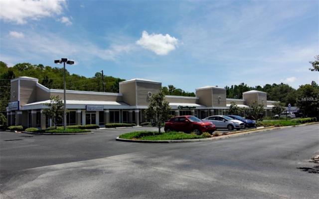 8361 S Suncoast Boulevard, Homosassa, FL 34446 (MLS #G5005959) :: The Duncan Duo Team