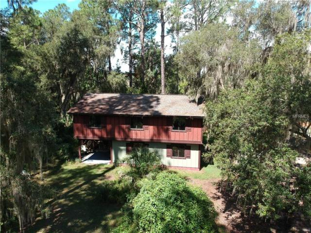 7305 Circle Drive, Lady Lake, FL 32159 (MLS #G5005980) :: Griffin Group