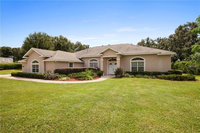 3914 Oak Pointe Drive, Lady Lake, FL 32159 (MLS #G5006014) :: G World Properties