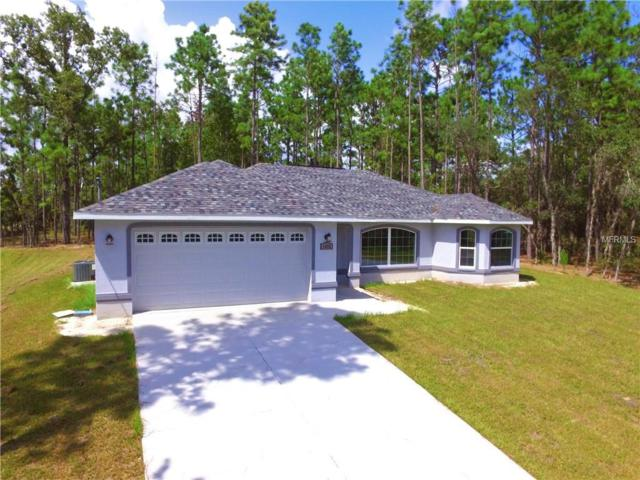 2444 W Oakland Lane, Citrus Springs, FL 34434 (MLS #G5006064) :: Team Pepka