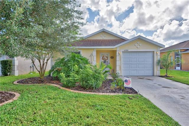 12389 NE 50TH View, Oxford, FL 34484 (MLS #G5006069) :: Griffin Group