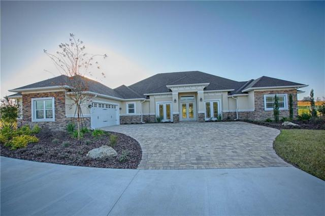 41522 Saddle Ridge Lane, Weirsdale, FL 32195 (MLS #G5006075) :: KELLER WILLIAMS CLASSIC VI