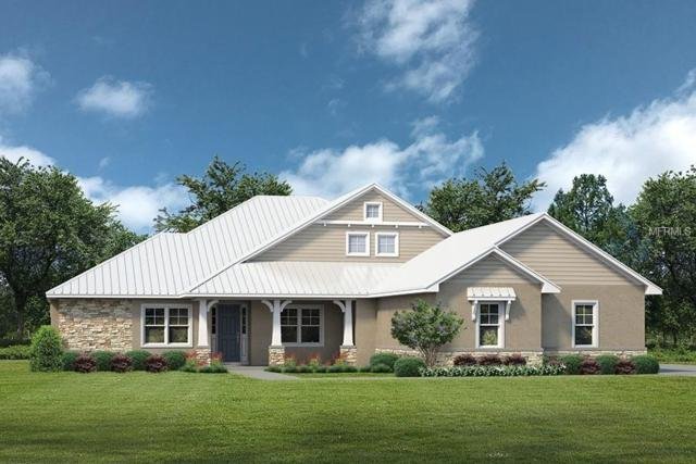 Lot E 45 Live Oak Drive Lot E 45, Tavares, FL 32778 (MLS #G5006129) :: The Duncan Duo Team