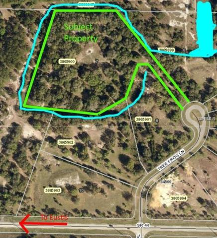Tree Frog Lane, Eustis, FL 32736 (MLS #G5006342) :: Griffin Group