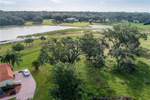 526 Two Lakes Lane, Eustis, FL 32726 (MLS #G5006393) :: KELLER WILLIAMS CLASSIC VI