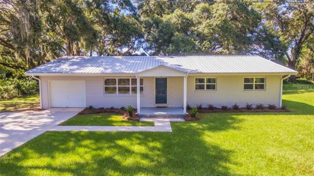 3317 County Road 207, Oxford, FL 34484 (MLS #G5006431) :: Bustamante Real Estate