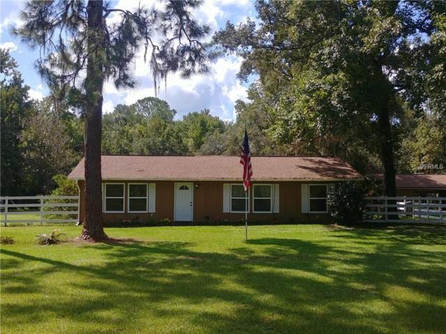 22240 Blue Creek Lodge Road, Astor, FL 32102 (MLS #G5006455) :: Team Bohannon Keller Williams, Tampa Properties