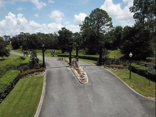 41525 Saddle Ridge Lane, Weirsdale, FL 32195 (MLS #G5006511) :: KELLER WILLIAMS CLASSIC VI