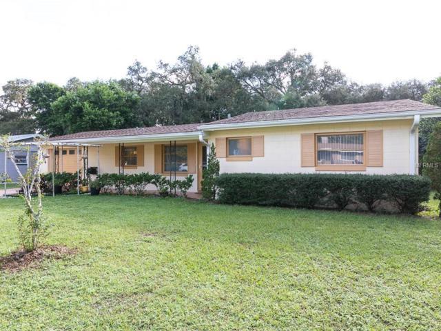37306 Sunrise Terrace, Umatilla, FL 32784 (MLS #G5006526) :: Lock and Key Team