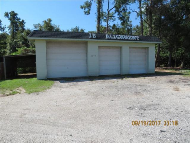 7048 State Road 50, Groveland, FL 34736 (MLS #G5006552) :: Team Pepka