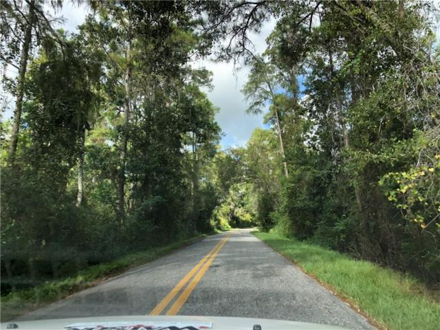 9600 Doctor Baker Rd, Groveland, FL 34736 (MLS #G5006613) :: Gate Arty & the Group - Keller Williams Realty