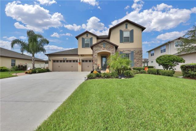 21345 Sullivan Ranch Boulevard, Mount Dora, FL 32757 (MLS #G5006744) :: Mark and Joni Coulter | Better Homes and Gardens