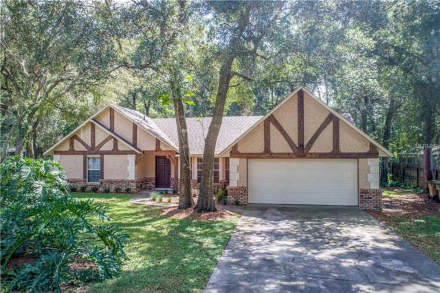 25822 Pinehurst Street, Mount Plymouth, FL 32776 (MLS #G5006809) :: The Lockhart Team